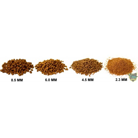 Pellet Skretting Coarse Fish 1kg - 2.3mm