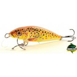 Dorado Classic 5.0cm TR Floating